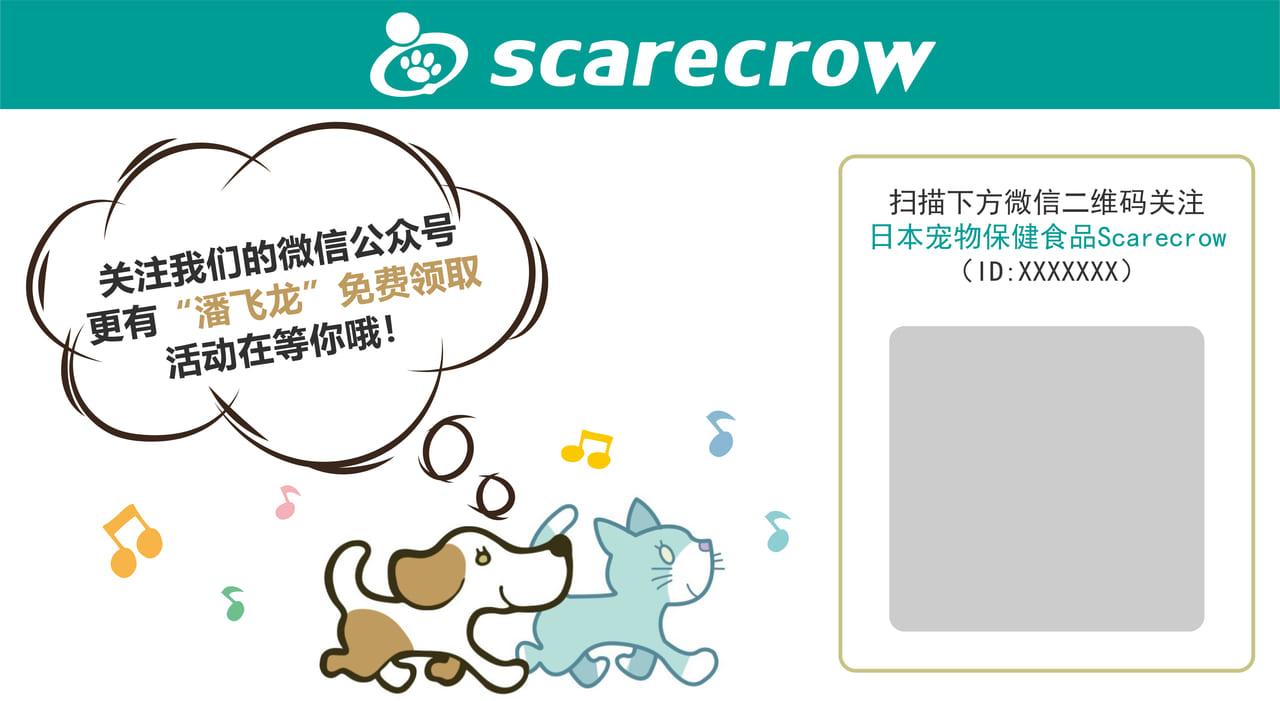 【西施犬】潘飞龙是这些孩子的护身符!插图2