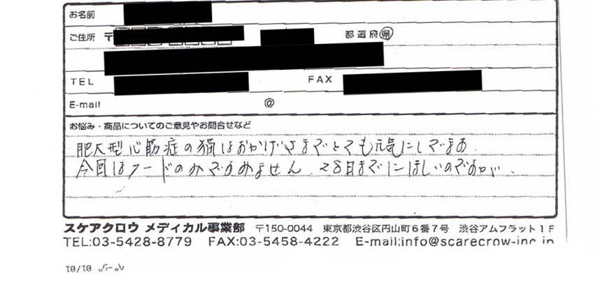 nekoのコピー.jpg