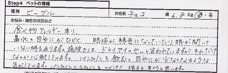 平野いづみ チョコ.jpg