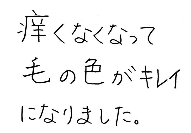 岩本ラッキー写真2.JPG