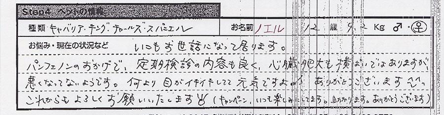 大西ひとみ ノエル.jpg