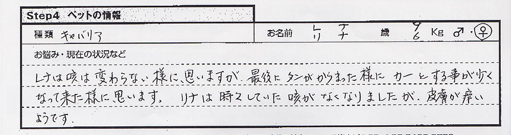 东条由起 レナ.jpg